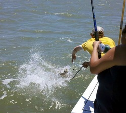freeport fishing charters, deep sea fishing guides, galveston deep sea fishing, galveston bay fishing
